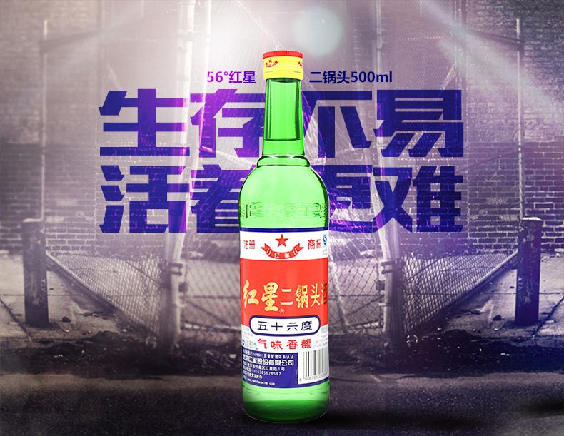 790-56°红星二锅头500ml_01.jpg