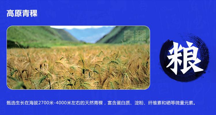 52°天佑德青稞酒生态五星-500ml-750_08.jpg
